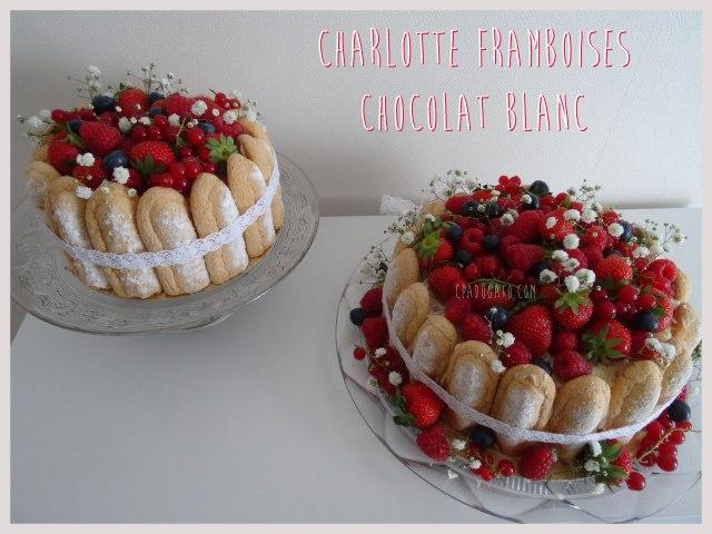 charlotte-framboises-chocolatblanc1