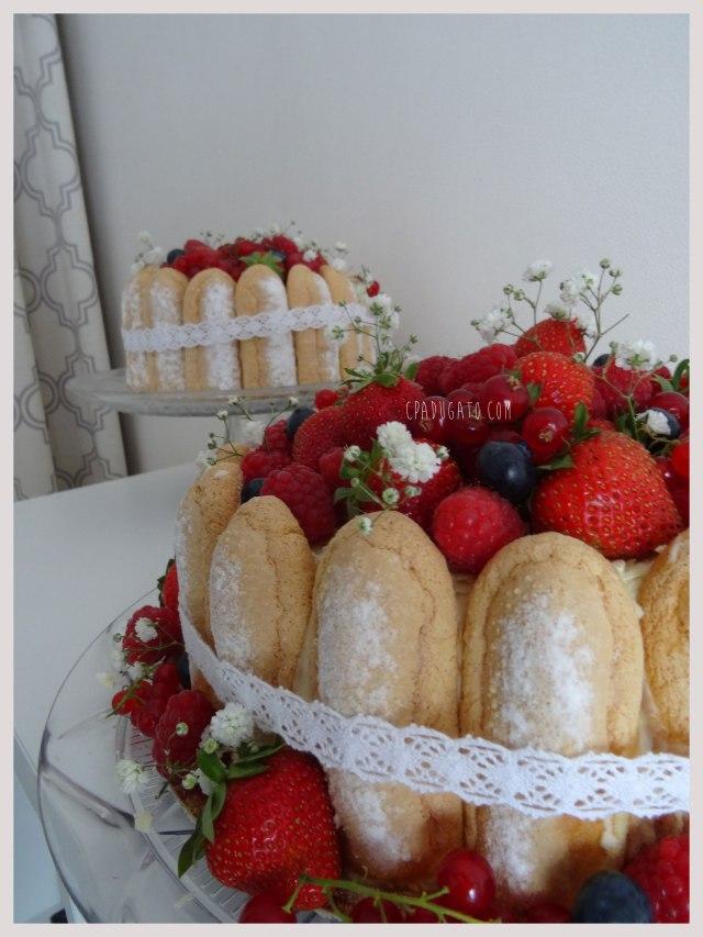 charlotte-framboises-chocolatblanc2